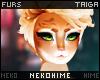 [HIME] Taiga Hair