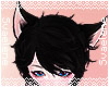 King o' Cats Ears