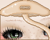 Eyebrows |Pink|