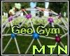 M1 Geo Gym