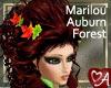 Auburn Forest