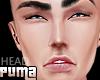 ::PUMA:: Bale Head