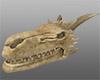 ~V~ Dragon Skull