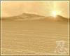 忍 Endless Desert