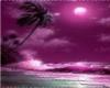 *Chy* Purple Paradise(F)