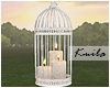 |K Candles Birdcage