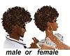 sj HeShe Afro