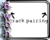 [6] Crack pairing