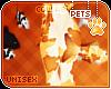 [Pets] Fumiko | fish