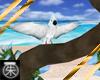 }T{Tropical Bird in Tree