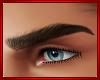 Black Eyebrows