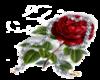 Glitter Rose Gif