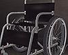 Wheelchair Rear Window