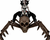 spider skeleton skull