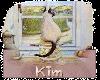 Kim kitty Sticker
