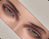 !! Theory Eyebrows