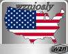 wzn USA FlagMap