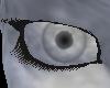 Stone Eyes [F]