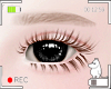 💍 Eyebrows Blonde