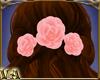VA ~ 3 Pink Back Roses