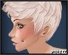 P|ToddHead