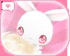 *D* Bunny