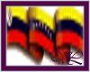 (VL) Venezuela 2