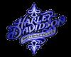 Harley Davidson Blue 2