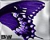 Purple Butterfly Wings