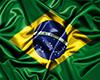 Brazil Flag ( Bandeira )