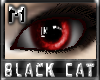 *.:.* BlackCat's Boutique UPDATED New Innocent Skin Set!! (3/18/10) *.:.* - Page 3 Images_9ec531fb42d62afe20d7924edff94b53