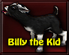 ~R Billy The Kid