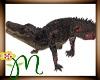 *M* Crocodile
