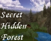 (S)Secret Hidden Forest