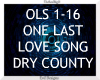 One Last Love Song ~
