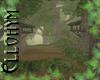 ~E- Spring Morn Forest