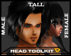 Head Toolkit (TALL)
