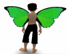 Green Wings2
