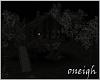 Dark Woods & Cabin