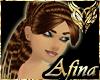 Amay Full Amber Dev