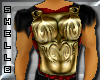 Armour chest plate