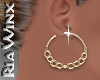 Wx:Gold Wire Hoops