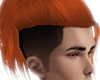 N| Genji Ginger
