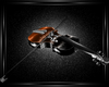 Pirate of the C violon