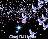 DJ Light Star Doves
