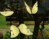 yellow,Animate,Butterfly
