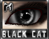 *.:.* BlackCat's Boutique UPDATED New Innocent Skin Set!! (3/18/10) *.:.* - Page 3 Images_c5c8776a1af1eda59021060203c03cb8