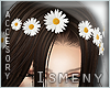 [Is] Daisy Hair Clips