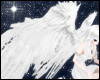 Angel Wings - Animated