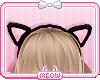 ♛Kitty Ears Blk x